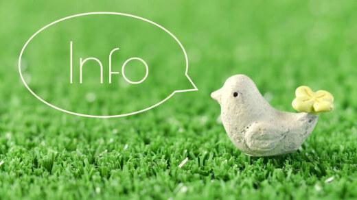 吹き出しで「Info」と呟く小鳥の置物