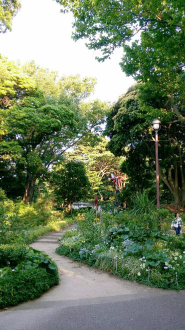 フランス山の庭園