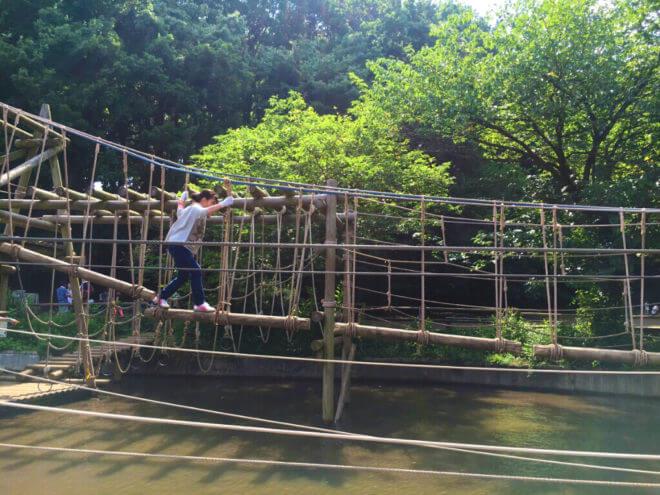水上アスレチックの丸太を渡る女性